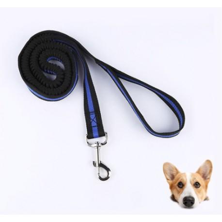 Amortizuojantis pavadėlis šunims, 2 cm pločio