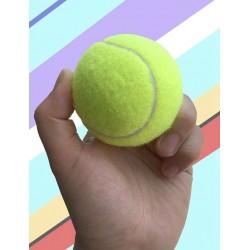 Žaislas šuniui - teniso kamuoliukas