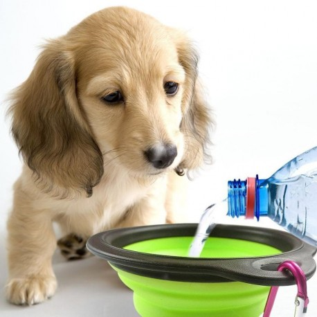 Kelioninis šuns dubenėlis, 13 cm